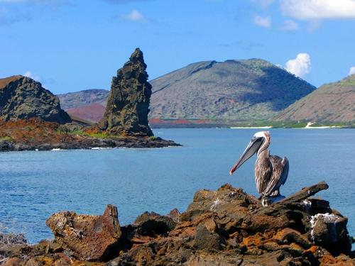Urlaub im Paradies – Die Galapagosinseln