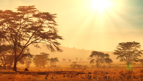 Outdoorurlaub Afrika